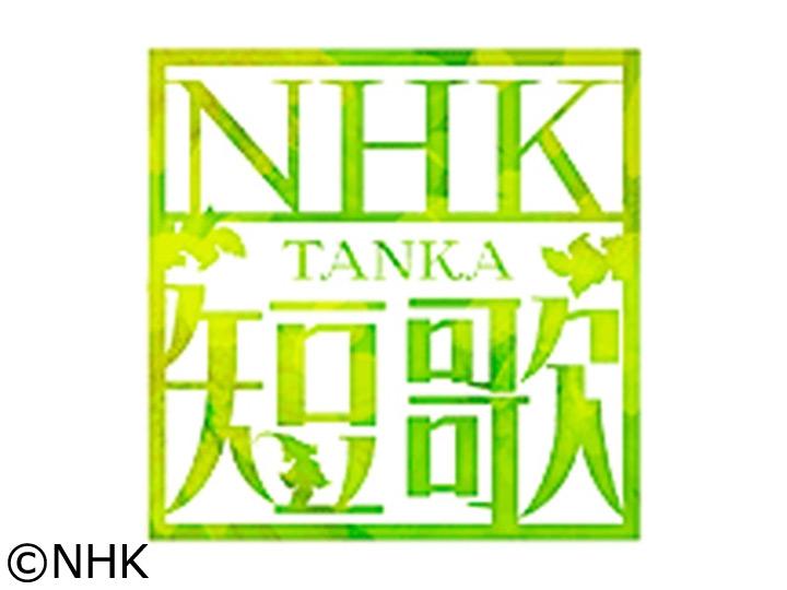 NHK短歌 | 番組情報