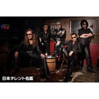 THE CRAZY RIDER 横浜銀蝿 ROLLING SPECIAL RETURNS(ザクレイジーライダーヨコハマギンバエローリングスペシャルリターンズ)