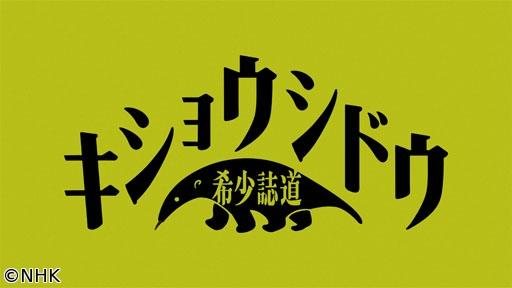 レギュラー番組への道 希少誌道(1)[字]