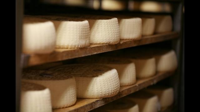 もっと!チーズ!チーズ!チーズ! #5 イタリア ピエモンテ[二]