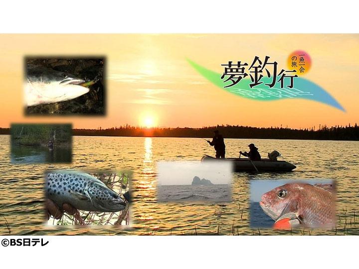 夢釣行▽自由な発想で川魚と遊ぶ粋人の釣り〜可憐なオイカワと源流イワナを求めて〜
