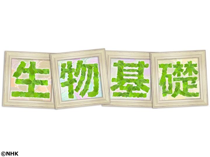 NHK高校講座 生物基礎