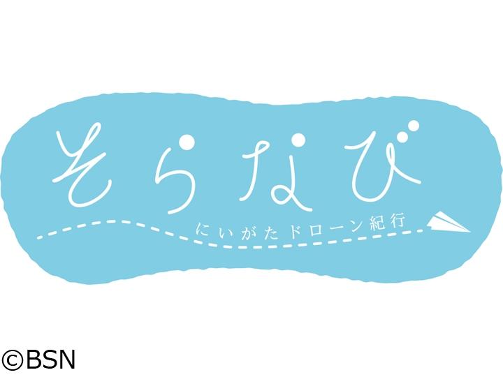 そらなび にいがたドローン紀行 旧新潟税関庁舎の桜(新潟市中央区)