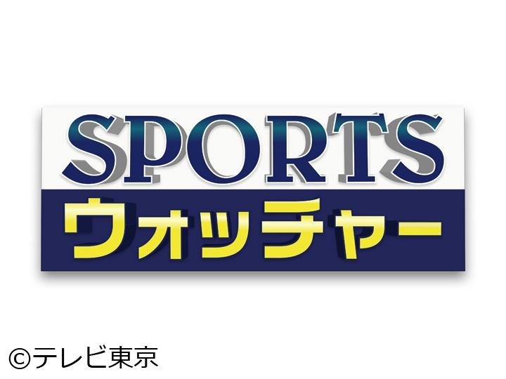 SPORTSウォッチャー▽現場取材から見えてくる最新のスポーツ情報!!