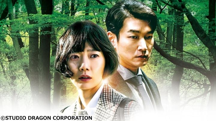 韓国ドラマ・秘密の森〜深い闇の向こうに〜▼第16話